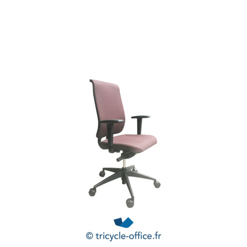 Tricycle Office Mobilier Bureau Occasion Fauteuil Ergonomique Girsberger 2